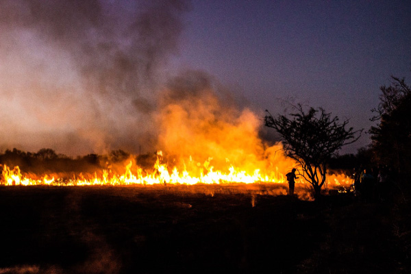 A-firefighter-tends-to-a-small-burn-to-clear-an-area-of-dry-grass-600x400