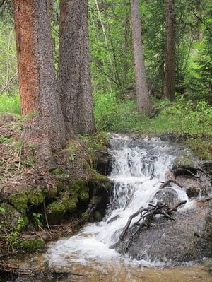 Hiking-Martin-Creek-Minturn-Colorado-1_web