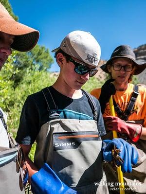 Jordan Ehrlich examining an invasive rusty crayfish (Orconectes rusticus).