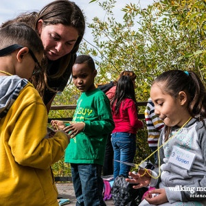 Graduate Fellow Educator Sara teaching a group of young students.
