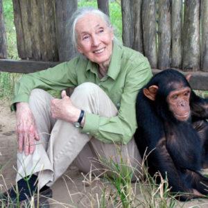 Jane-Goodall-300x300