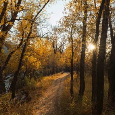 Miller-Ranch-Open-Space-Autumn-400x400