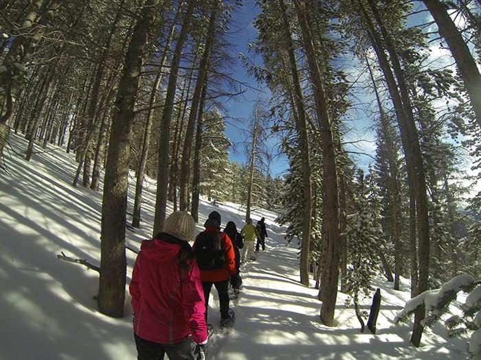 Snowshoe-Hikes-Sylvan-Lake-State-Park-Colorado-McKenzie-Gulch