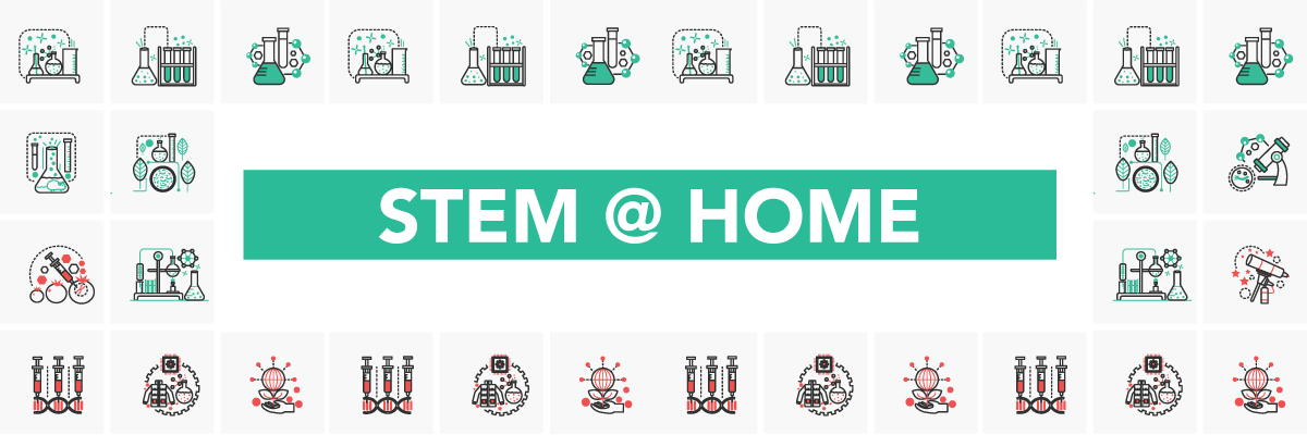 Stem-at-Home_Blog-header-2