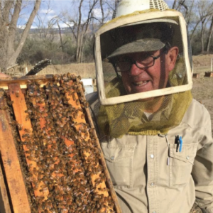 The Science Behind Honey Bees