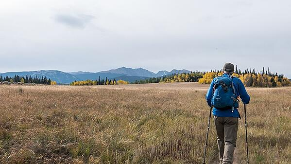 Walking-Mountains-Science-Center-Hiking-Stag-Gulch-Edwards-Colorado_WEB2