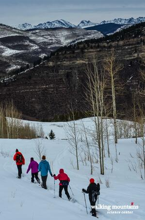 Great Snowshoe Hike Vail Colorado Meadow Mountain Minturn