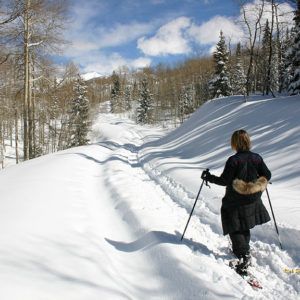 The History of Snowshoeing